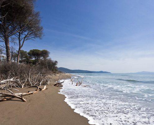 spiaggia, Parco della Maremma, Toscana