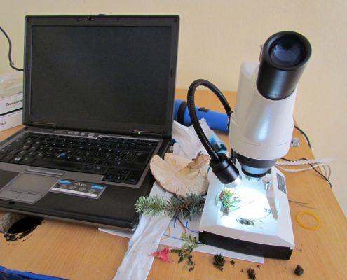 ua-lab-scentifico-e-orto-001