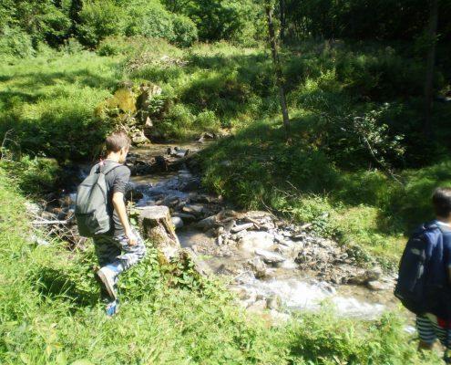 percorso bosco